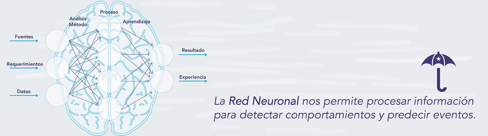 banner red neuronal